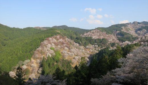 【吉野山花見】世界遺産 吉水神社へ 一目千本桜 見てきた!